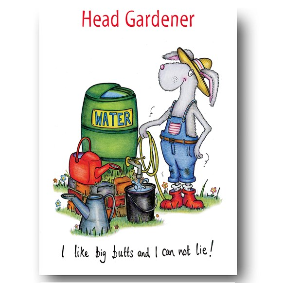 I like Big Butts I can not lie Greeting Card