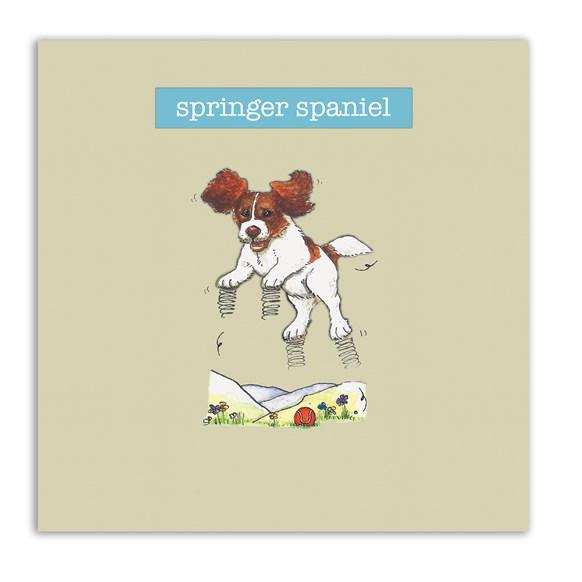 Springer Spaniel Embellishment Card