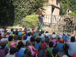 bambini ed elefanti