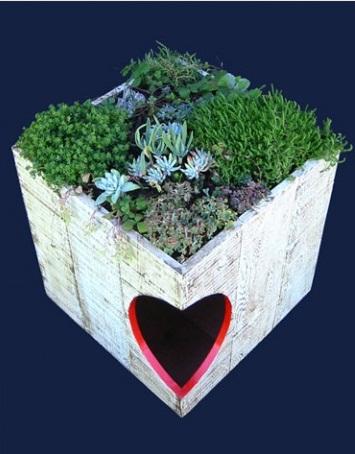 Idee per una cuccia sostenibile con tetto verde - Cuccia per gatti da esterno fai da te ...