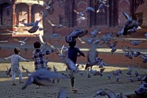 Bambini giocano in piazza con i piccioni