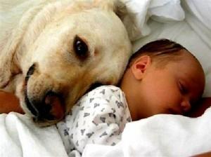 Un buon amico protegge anche dalle allergie!