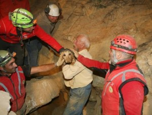 cane salvato Campochiesa