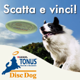 Concorso fotografico disc dog
