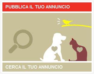 annunci-di-adozione-animali-domestici