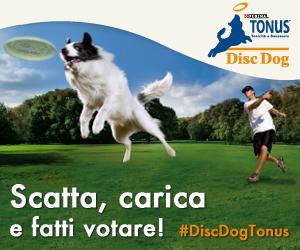 concorso-foto-cani-discdog-img_banner