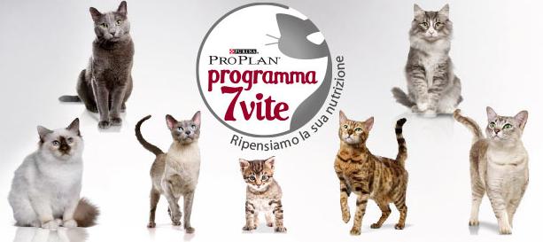 proplan-sette-vite-gatto