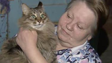 gatto-russia-neonato