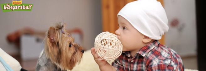 adottare-cucciolo-consigli-2