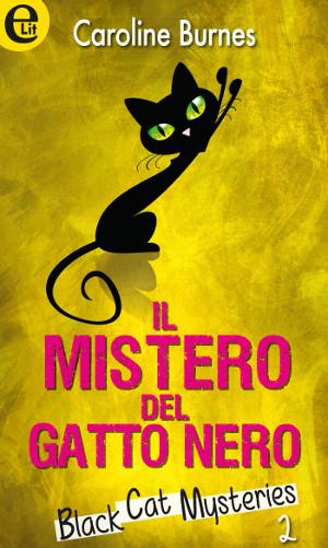 gatti-neri-romanzo-Il-mistero-del-gatto-nero