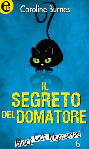 gatti-neri-romanzo-Il-segreto-del-domatore-small
