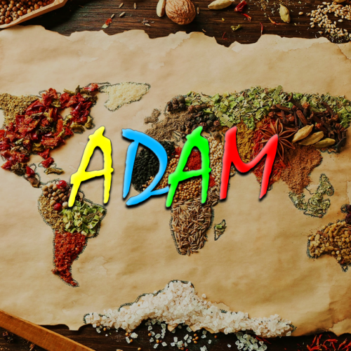 ADAM Home Food