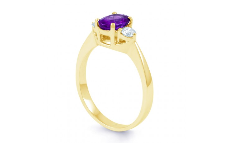 Paragon Amethyst Gold Ring product image 2