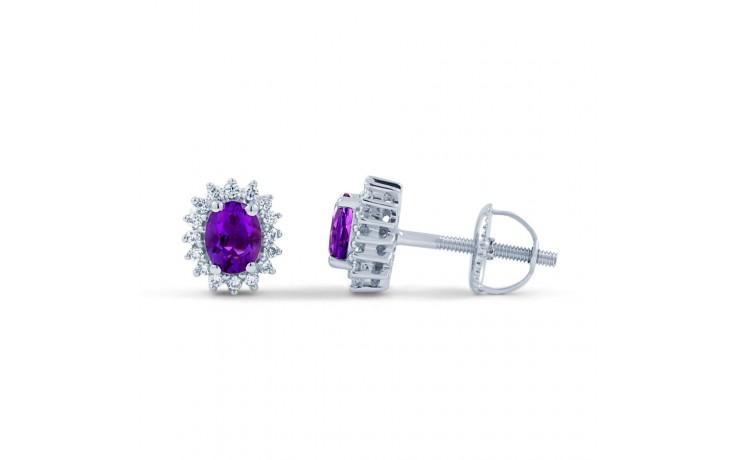 Amethyst Halo Stud Earrings product image 1