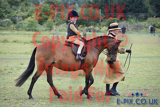 Longlands Equestrian In-Hand and Ridden Showing 26-07-2020