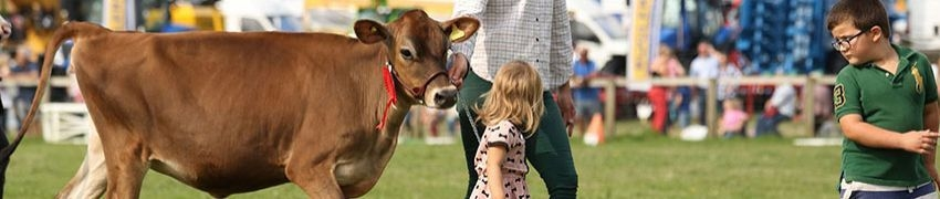 Dorset County Show 3rd and 4th of September