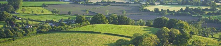 Painswick Valley