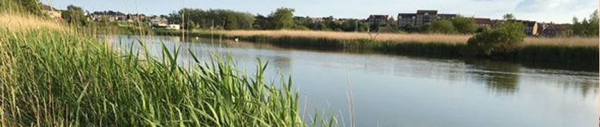 Radipole Lake RSPB Nature Reserve title=