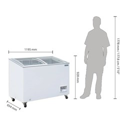Polar G-Series Display Chest Ice Cream Freezer 270Ltr