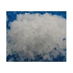 Quattro Commercial Ice Flaker 85kg per Day with 20kg Storage Bin SZB85F