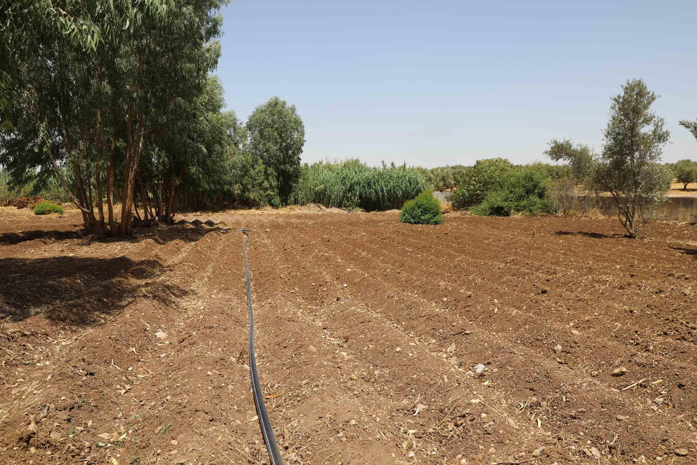 MoroccoEcosia