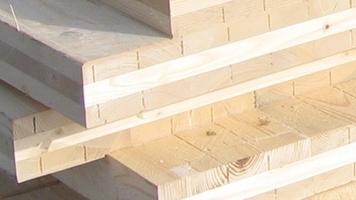 Woodbau Srl