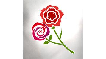 Mercato del Fiore