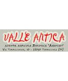Valle Antica Azienda Agrituristica e Agriturismo Biologico Francesco Avanzati