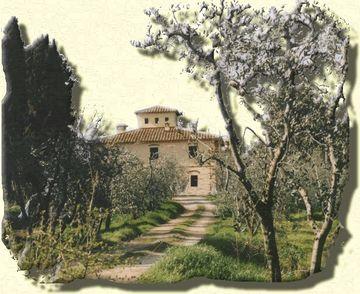 Agriturismo biologico I Moricci