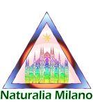 Naturalia-Lucilla Sperati
