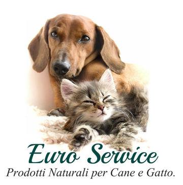 Euro Service S.A.S
