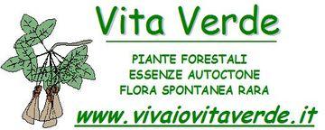 Vita Verde di Gallerati Valerio