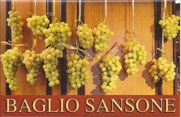 BAGLIO SANSONE SRLCR