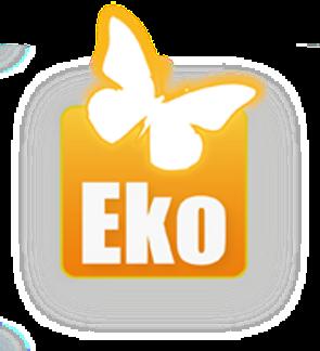 gruppo eko scarl