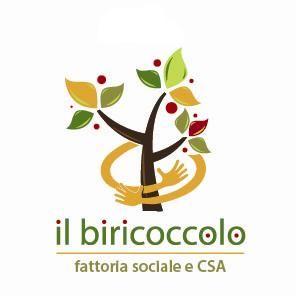 IL BIRICOCCOLO