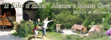 Azienda agricola Altaura e Monte Ceva