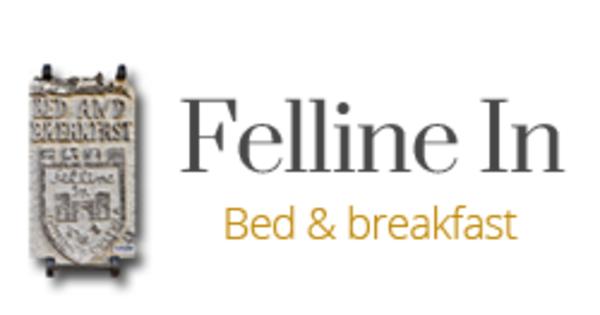 Felline in b b