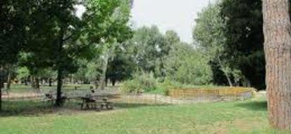 A Torino parchi, giardini e spazi verdi di grande valore storico-artistico