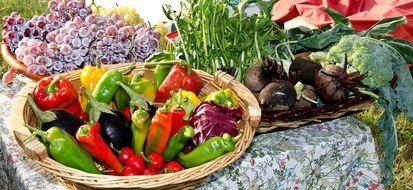 Quando l'agriturismo sposa l'agricoltura biologica
