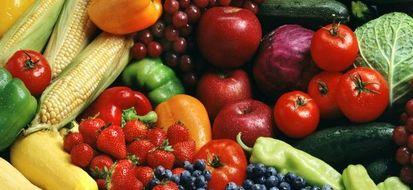 Consumare cibo bio favorisce la sostenibilità ambientale e aiuta a mantenersi sani