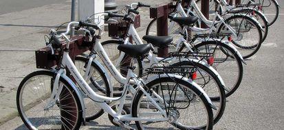 Due ruote a noleggio anche a Livorno: il bike sharing in città dal 2012