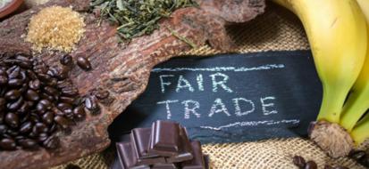 Gruppi di acquisto ecologici, approccio ambientale all'acquisto