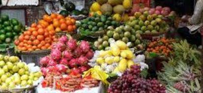 La tradizione agricola della provincia romana nei mercatini bio