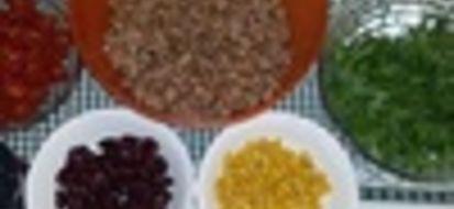 A Bari una cucina gluten free chiara come il sole