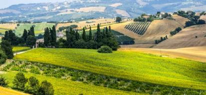 I 5 migliori mercati bio delle Marche