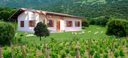 La bioedilizia 'made in Sardegna' si sviluppa grazie ai prodotti naturali della sua terra