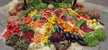 Rimini promuove la scelta bio fra ricette ed una guida sull'alimentazione sana