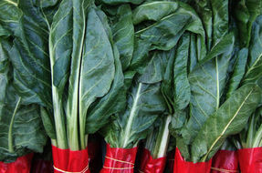 Chard, properties and benefits of this seasonal vegetables