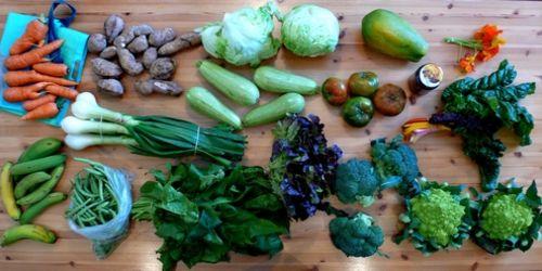 Marzo e la verdura di stagione