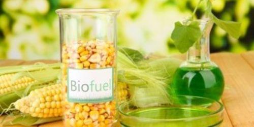 Bio-carburante